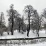 Высота снежного покрова в Москве уменьшилась на 20%